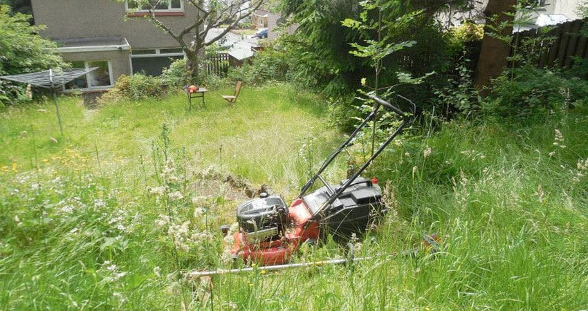 overgrown Garden - UK Property Cash Buyers