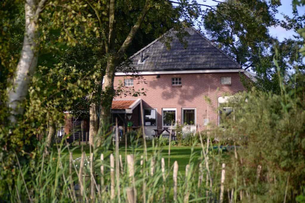 Overgrown Garden - UK Property Cash Buyers